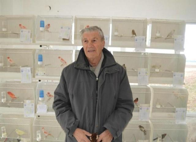 Labin: Izložba golubova, kunića, peradi i ptica