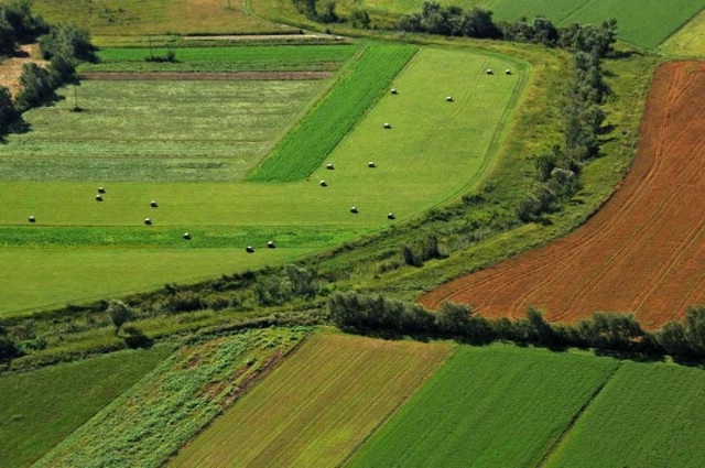"""Malim poljoprivrednicima osigurano preko 150 milijuna kuna – raspisan novi natječaj za podmjeru 6.3. """"Potpora razvoju malih poljoprivrednih gospodarstava"""""""