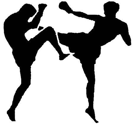 Kickboxing kup »Top Terme 2008.«: Tri naslova Labinjanima