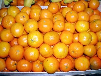 Đir po labinskoj tržnici: Klementine po 14 kuna