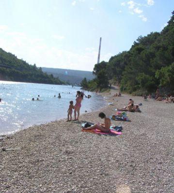 Forbes Hrvatska: 25 tisuća Labinjana postaju suvlasnici Plomina III