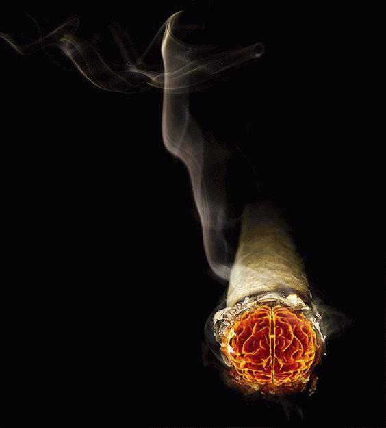Duhanski dim nad Rockwoolom?