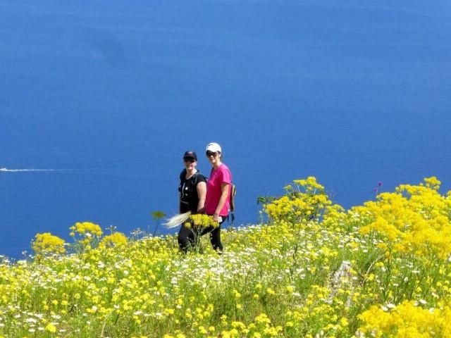 Kamo za vikend: Vidikovac Plomin i rajski vrt iznad njega