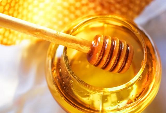 Labinski pčelari sutra ugošćuju pčelara iz Idrije