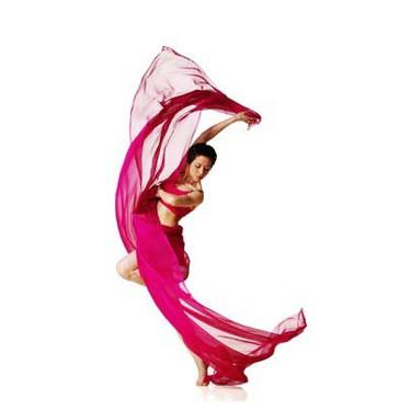 Završna priredba plesača