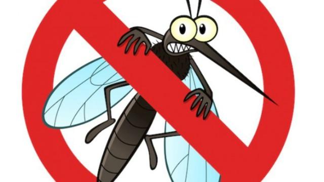 Obavijest o dezinsekcji komaraca u Kršanu 17. 8. 2017.