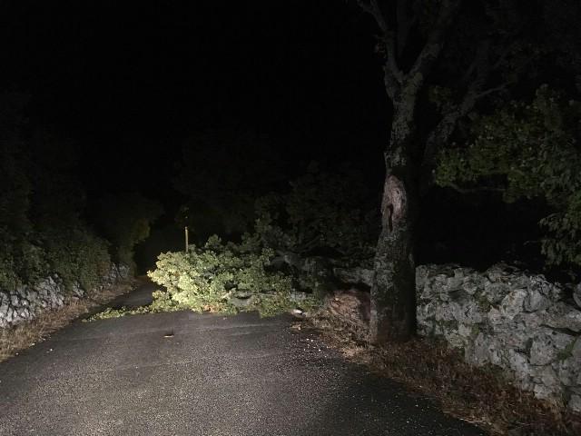 Silovit nalet vjetra diljem Istre, u Labinu udar 106 km/h