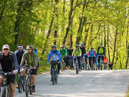 [NAJAVA] Rekreativna biciklijada Terra Albona 24. 9. 2017.