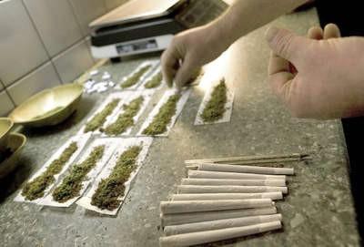 Zabrinjavajuće: Marihuana u Istri i Dubrovniku polulegalna