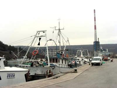 Ribarstvo na istočnoj obali Istre: Labinjani slabo jedu ribu