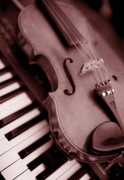 Suradnja glazbenih škola iz Istre i Primorja