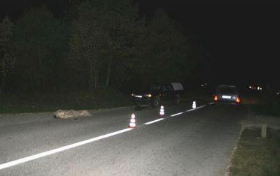 U naletu automobila poginuo pješak iz Barbana