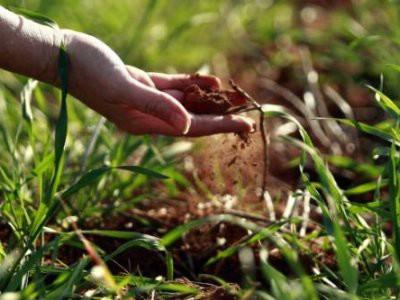Poticaji za poljoprivredna gospodarstva
