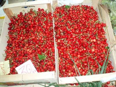 Đir po labinskoj tržnici: Prve svibanjske trešnje