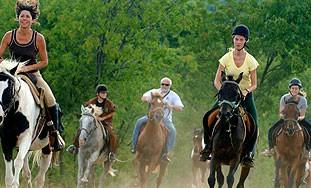 """Konjička utrka """"Istra Terra Nostra"""" na relaciji Manjadvorci-Pićan"""