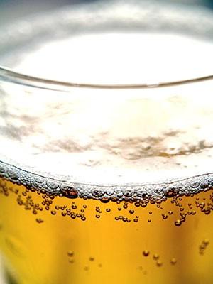 Festival piva na Dubrovi