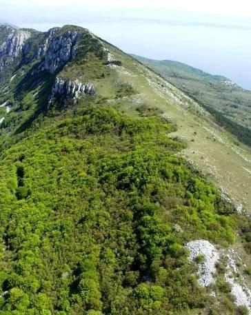 U šumi na padinama Učke pronađen leš muškarca