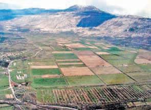 Poljoprivredno državno zemljište u Čepiću i Dolini Raše: Od stočarstva do propalog uzgoja šparuga