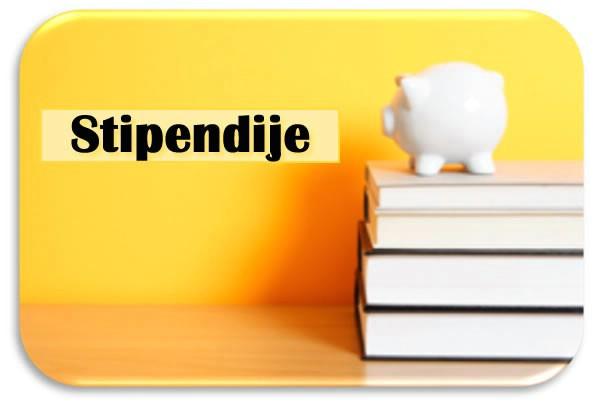 Istarska županija nakon poništaja, ponovno raspisuje natječaj za dodjelu stipendija studentima Istarske županije 2009/10