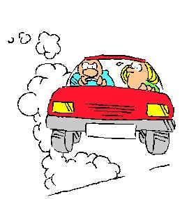 Rezultati ankete: Labinjani se najviše vole kretati automobilom
