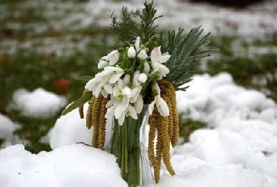 Visibabe usred zime u Dolini Raše