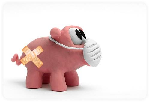 U Labinu nema novih slučajeva svinjske gripe